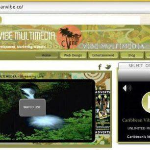 Caribbean Vibe Multimedia